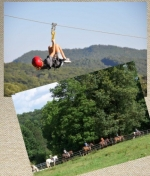 Sunburst Stables and Zip Line Tours