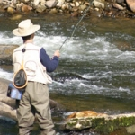 Fly Fishing in Cherokee County