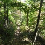 Green Mountain Hiking Trail - Blue Ridge GA